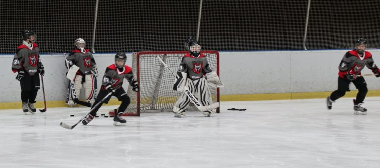 Eishockey U-13 Spiel SV Brackwede (2)