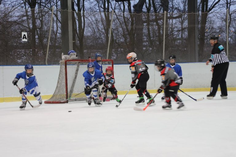 Eishockey Woelfe Turnier U-9 (1)