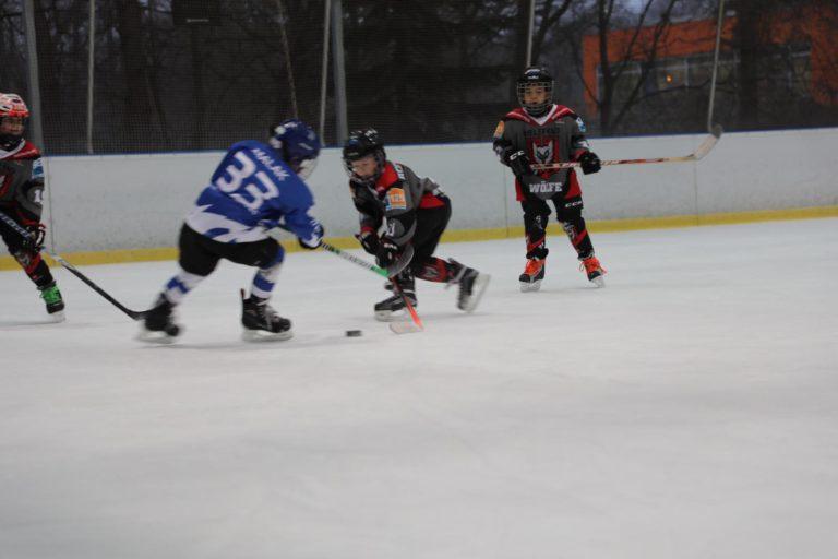 Eishockey Woelfe Turnier U-9 (8)