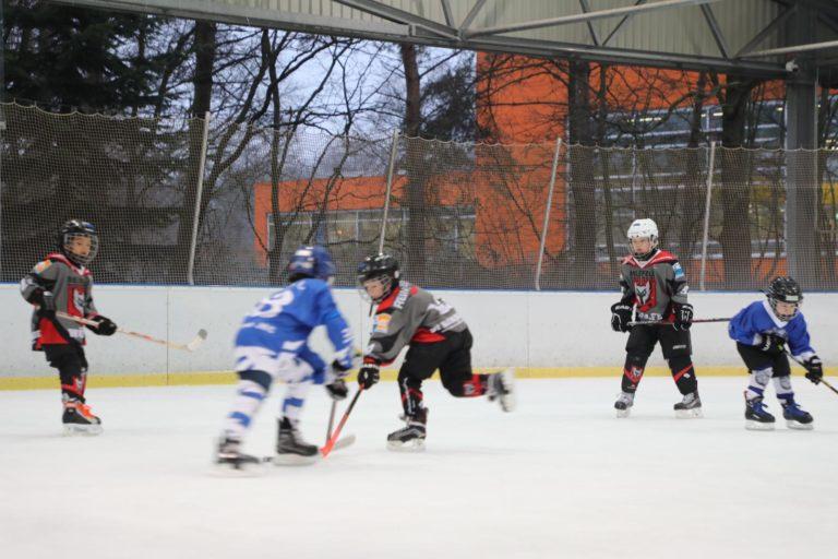 Eishockey Woelfe Turnier U-9 (9)